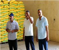 الزراعة: 14 محطة غربلة توفر تقاوي القمح للمزارعين بأسعار مخفضة لزيادة الإنتاجية