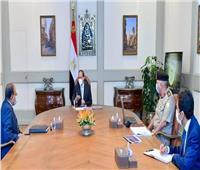 الرئيس السيسي يوجه بضمان تطبيق أعلى درجات الأمان لمحطة الضبعة النووية