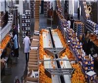 كيف نجحت الحكومة في زيادة معدل الصادرات المصرية؟.. فيديو