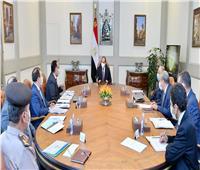 الرئيس السيسي يوجه بتعزيز جهود تطوير قطاع التعدين في مصر| فيديو