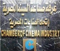 صناعة السينما: إعداد خطاب ضم تحفظات لائحة محافظة القاهرة ورفعها لـ«عبدالدايم»