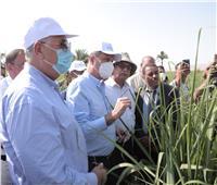 «الزراعي» يطلق مبادرة لتمويل تكاليف الحقول الاسترشادية للري الحديث