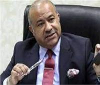 تنمية التجارة.. إقامة مناطق لوجستية وتجارية حدودية مع ليبيا والسودان