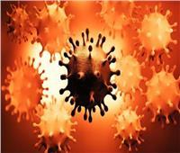 عوض تاج الدين: كورونا يتحول إلى فيروس موسمي بنهاية 2021| فيديو
