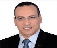 الجالية المصرية بالكويت: نثمن استجابة الداخلية لمطالبنا بشأن «الفيش المميكن»