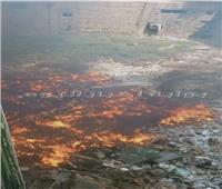 الحماية المدنية تنجح في إخماد حريق ضخم بقطعة أرض بالجيزة  صور