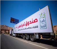 رئيس الوزراء: صندوق تحيا مصر يتبنى 6 برامج رئيسية