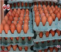 الطبق بـ40 جنيهًا.. ارتفاع أسعار البيض في الأسواق لهذا السبب| فيديو
