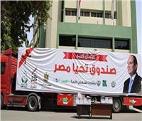 خبير بـ «المصري للدراسات»: التسويق يساعد على زيادة موارد صندوق تحيا مصر