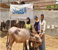 مدير «الأورمان» للمصريين: تبرعوا لصندوق «تحيا مصر» لدعم غير القادرين