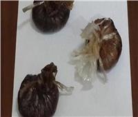 ضبط «بانجو وأفيون» بحوزة 5 متهمين في أسوان