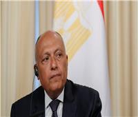 شكري: ندعم كافة الإجراءات المشروعة للرئيس التونسي