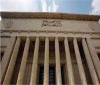 جنايات القاهرة تقضي بالمؤبد للسباك القاتل في الساحل