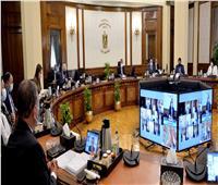 مجلس الوزراء يهنئ «الفلاح المصري» بمناسبة عيده الـ 69