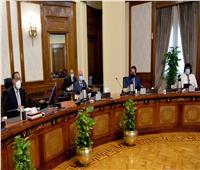 الحكومة توافق على تعديل قانون إنشاء نقابات المهن التمثيلية والسينمائية والموسيقية