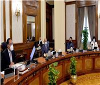 الحكومة توافق على إصدار اللائحة التنفيذية لقانون التأمينات والمعاشات