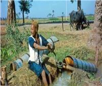 البنك الزراعي: قرض «باب رزق» جاء اتساقًا مع مبادرة «حياة كريمة» | فيديو