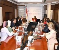 وزيرة التخطيط والرئيس التنفيذي للمؤسسة الدولية الإسلامية يبحثان سبل التعاون