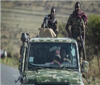 أسلحة ثقيلة وذخائر| تيجراي تستعرض مكاسبها ضد قوات آبي أحمد.. فيديو