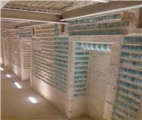اليوم.. افتتاح مقبرة زوسر في سقارة للزوار
