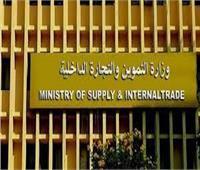 الجريدة الرسمية تنشر قرار التموين بشأن رسوم خدمات السجل التجاري الجديدة
