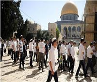 الأزهر: قفزة كبيرة في عدد مقتحمي المسجد الأقصىخلال أغسطس
