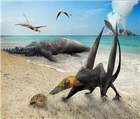 تنين طائر عمره 160 مليون عام...اكتشاف حير العلماء