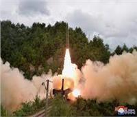«كوريا الشمالية» تختبر صواريخ محمولة على عربات سكك حديدية|فيديو