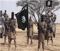 مقتل 16 جنديا نيجيريا في كمين لداعش
