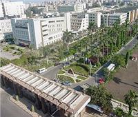 36 جامعة تشارك في مهرجان «المنصورة الرقمي» الأحد