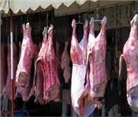 استقرار أسعار اللحوم بالمجمعات الاستهلاكية ..والكيلو يبدأ من 55 جنيها