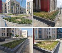 وزير الإسكان يتابع المشروعات المختلفة الجاري تنفيذها بمدينة العلمين الجديدة | صور