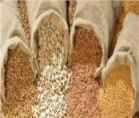 الزراعة: الرئيس وجه بضرورة وجود مخزون اسراتيجي من تقاوي الخضروات