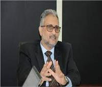 وكيل وزارة التخطيط: مكاتب السجل المدني تدخل ضمن فئات جائزة مصر للتميز