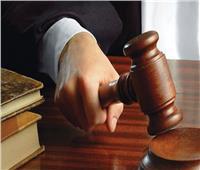 تأجيل محاكمة «بقال» سرق حقيبة مواطنة في دار السلام .. لـ13 نوفمبر