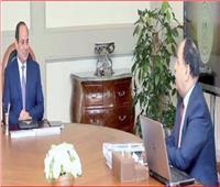المالية: الرئيس يقود مصر للريادة بمنظومة جمركية تصبح وجهة عالمية للتجارة