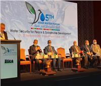 «القومية لمياه الشرب» تستعرض جهود الدولة بـ«مبادرة حياة كريمة»