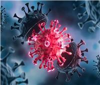 في ظل متحور«دلتا».. أستاذ مناعة يكشف الفرق بين «البرد» وكورونا؟  فيديو