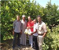 «رصد بقايا المبيدات».. جهود «الزراعة» للحفاظ على صحة المصريين