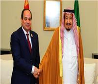 العلاقات المصرية السعودية تنسيق سياسي لا ينقطع وقفزات غير مسبوقة
