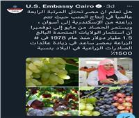 السفارة الأمريكية بالقاهرة تشيد بجودة العنب المصري