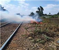السيطرة على حريق  بجوار شريط السكة الحديد بقرية الحامول بالمنوفية