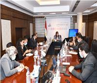 وزيرة التخطيط تناقش خطة تنمية الأسرة المصرية