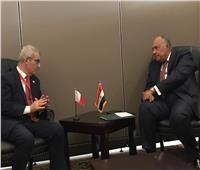 شكري  يلتقي نظيره بدولة مالطا لتعزيز العلاقات الثنائية المشتركة