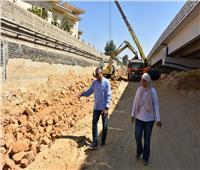 استعدادات موسم الشتاء وأعمال التطوير بالقاهرة الجديدة | صور