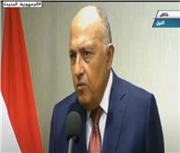 وزير الخارجية: مصر تدعم مسار خارطة الطريق في ليبيا | فيديو