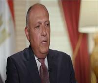 شكري: الرئيس السيسي طرح رؤية مصر أمام الجمعية العامة حول التعاون الدولي