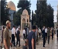 وزير الأوقاف الأردني يحذر من تمكين اليهود من ممارسة اقتحامات للمسجد الأقصى