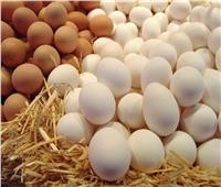 أسعار البيض اليوم .. الإثنين