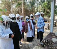 التدريب على إستخلاص العسل بجامعة القناة